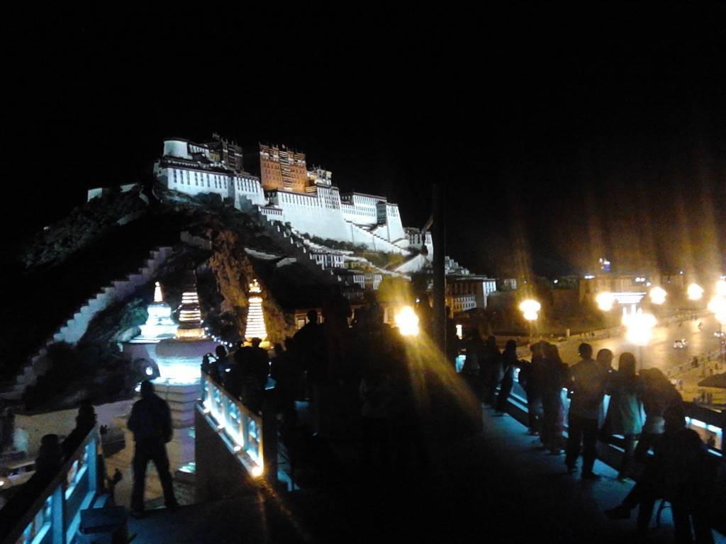 夜晚在药王山随手拍的布达拉宫。