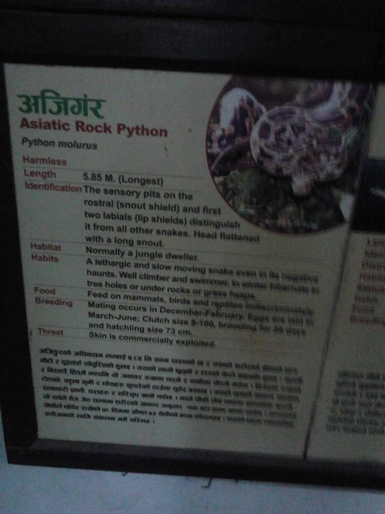 因为它是python.