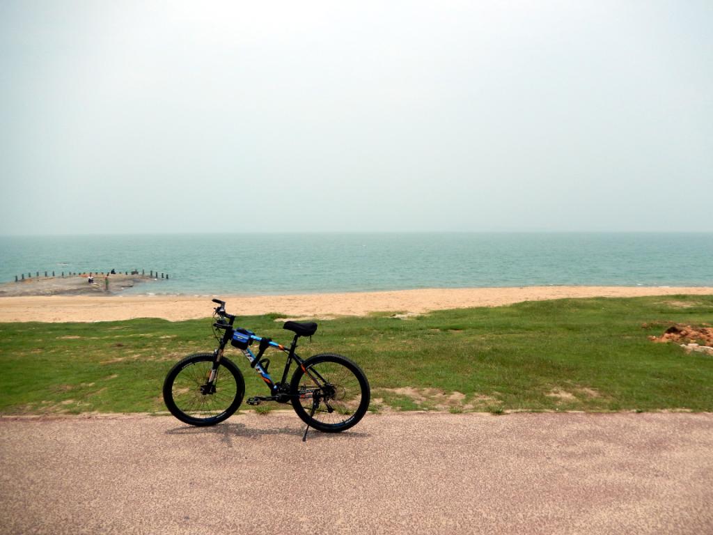 厦门自行车环岛
